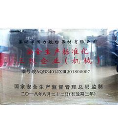 华东巢湖国力航标器材有限公司安全生产标准化三级企业