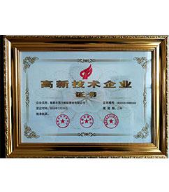 华东巢湖国力航标器材有限公司高新企业证书